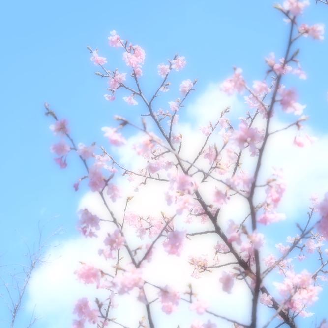 EPRoom縺薙y霑第園繝輔か繝・DSCF9040_