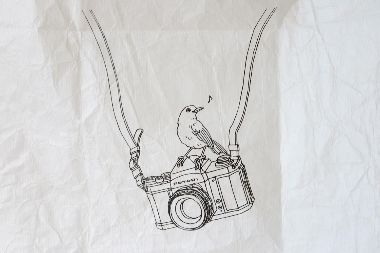 camerablack