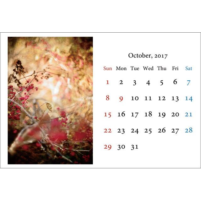 apple_calendar_desk10