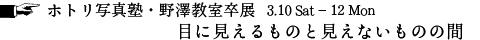 nozawa2018_title