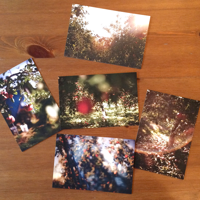 postcard03