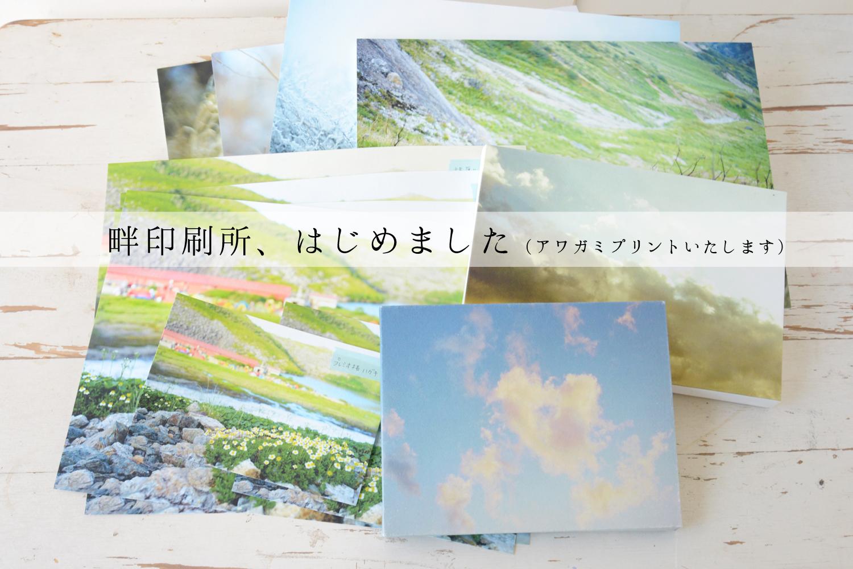 print_maintitle