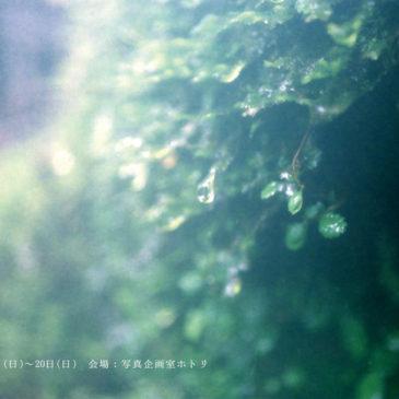 第七回アワガミ公募展「自然の恵み」6/13(日)~20(日) 開催のお知らせ ※出展者募集!